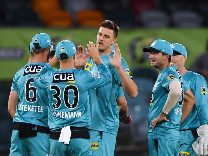 South Africa legend Morne Morkel celebrates a wicket with his Brisbane Heat teammates.